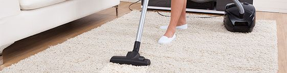 Notting Hill Carpet Cleaners Carpet cleaning